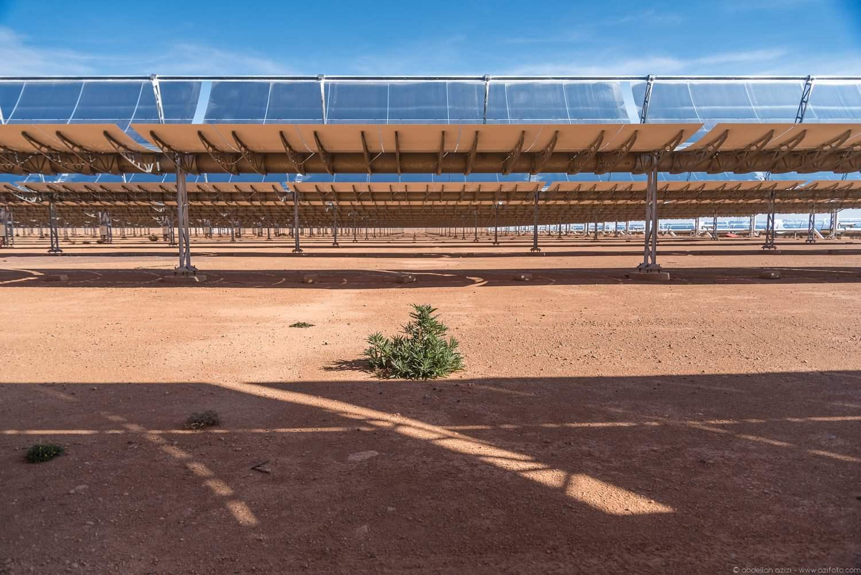 Plant inside Ouarzazate solar power station